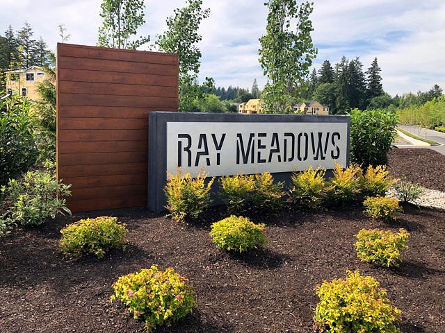 ray meadows.jpg
