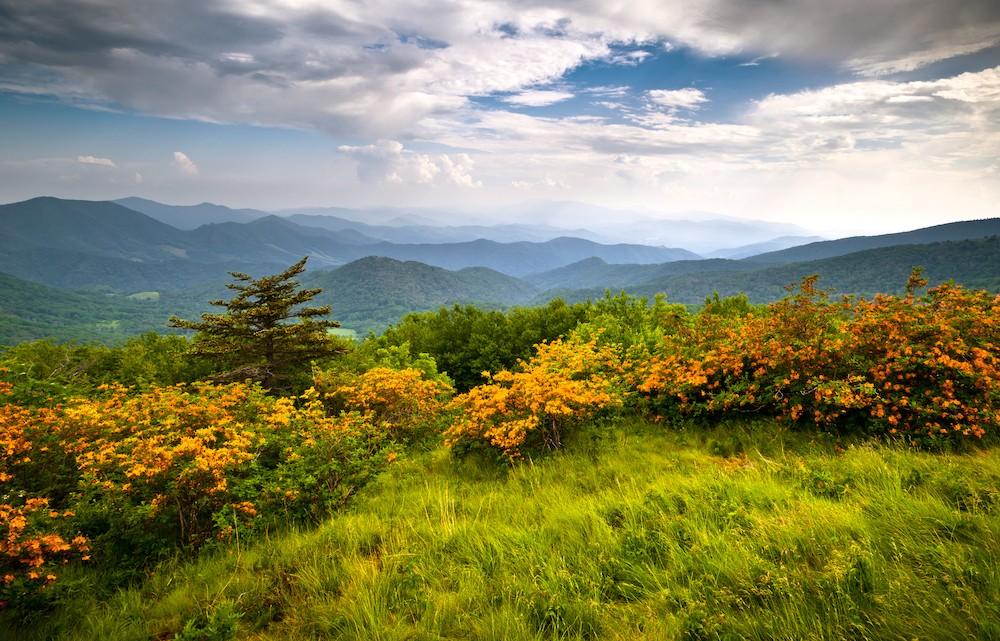 Horizon-View.jpg