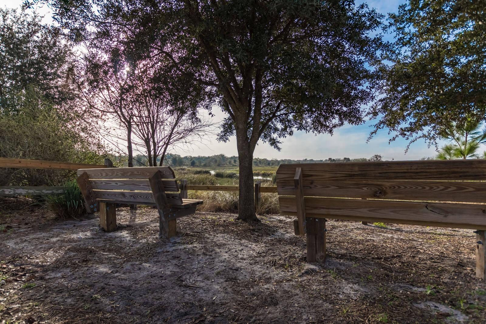 cardel-homes-tampa-worthington-community-photos-19.jpg