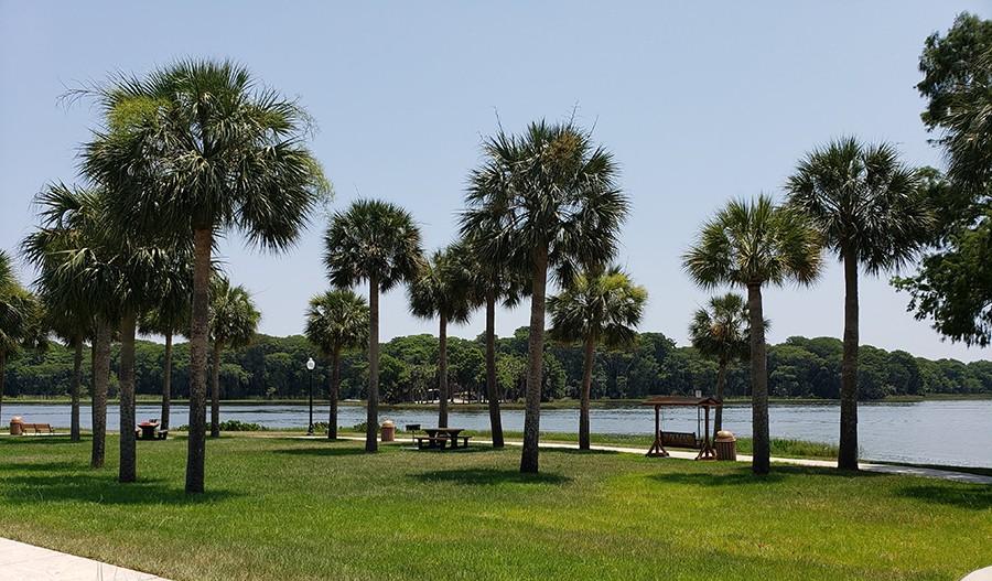SeasonsAtHillside-ORL-VenetianGardens Palm Trees