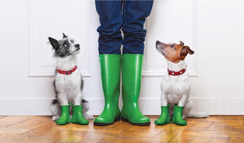 Boots New.jpg